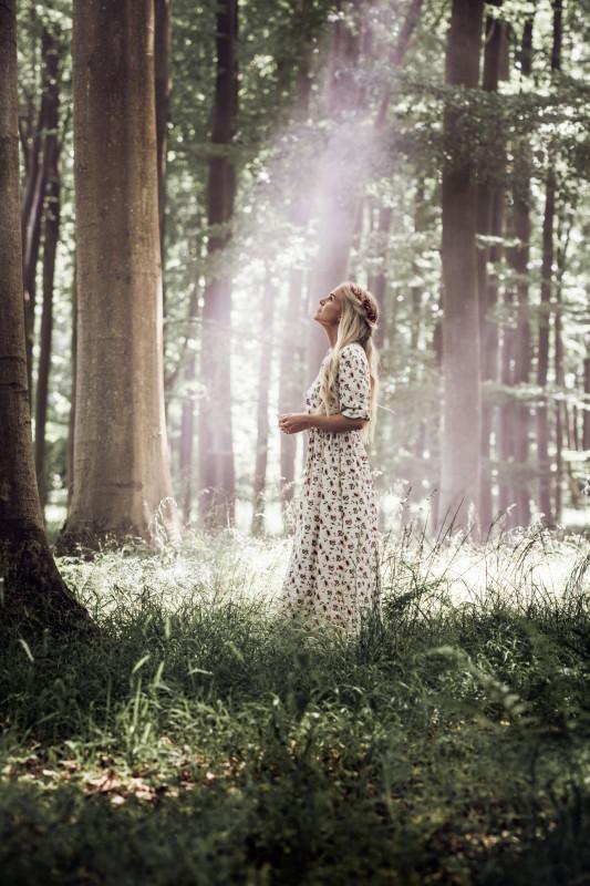media/image/Nordic-Dream-naturen.jpg